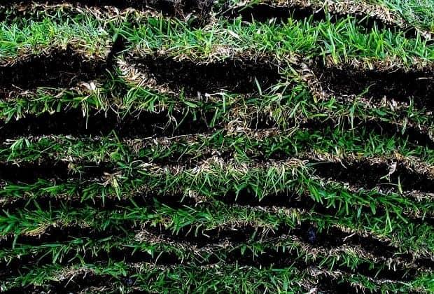 Куча верхнего слоя земли с зеленью