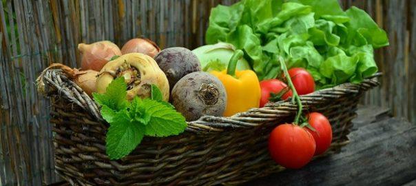 Оптовые поставки овощей в москве и области