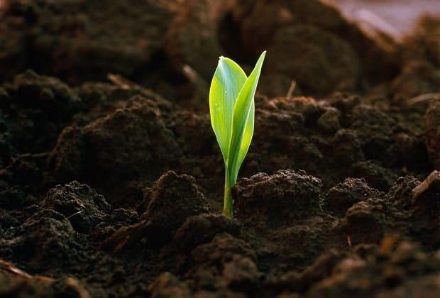 Сельскохозяйственная техника для увеличения урожайности